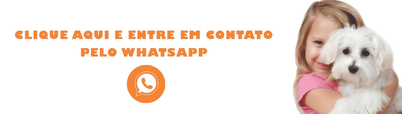 Banner Agevet Whatsapp